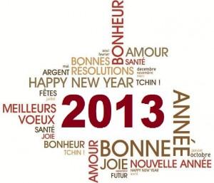 Bonne année 2013 ! dans L'association bonne-annee-2013-blog-hern-300x257